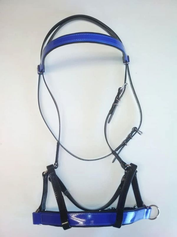 Uzdečka Sidepull, modrá s černou, výprodej Daretex