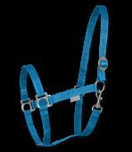 azurová pony
