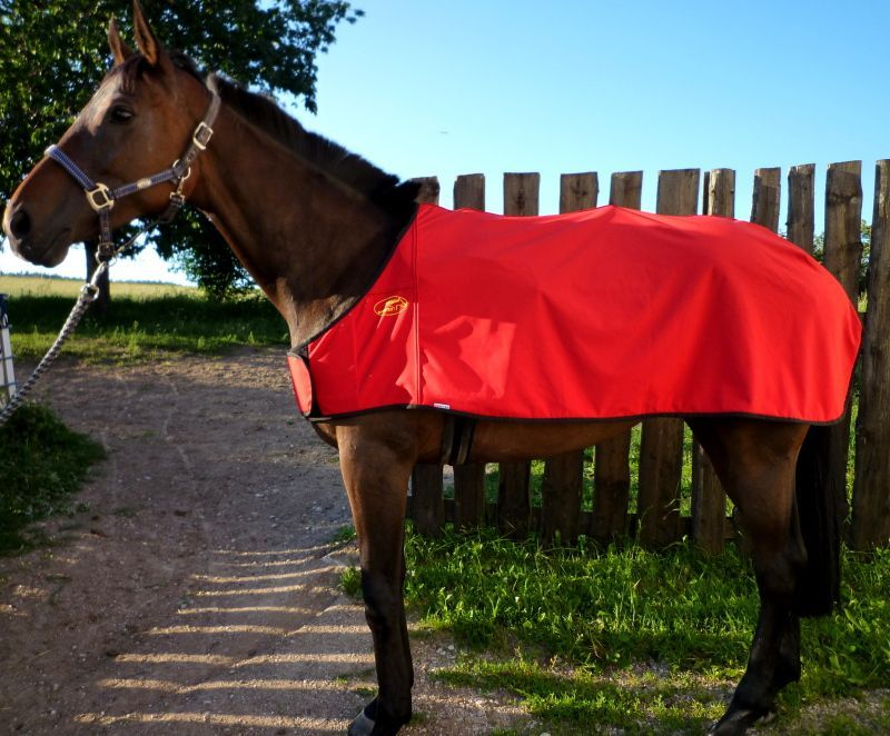 Bederní deka VÍTĚZ, sofshell Daretex